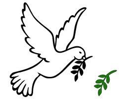 البابا فرنسيس: تنمية ثقافة اللقاء والحوار وتعزيز السلام