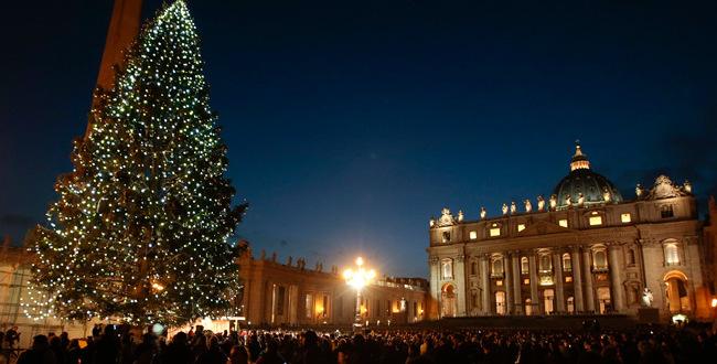 شجرة الميلاد وصلت الى ساحة القديس بطرس