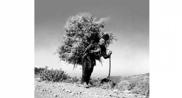Le Liban sans retouche لرولان صيداوي تكريم للمصور الراحل الذي أرّخ لبنان القديم