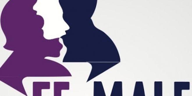 رزمة تدريبية ريادية عن التغطية الاعلامية لقضايا العنف ضد النساء في اللويزة