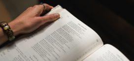 """إنجيل اليوم: """"فاترُكوا القَمحَ يَنمو معَ الزؤانِ إلى يومِ الحَصادِ"""""""