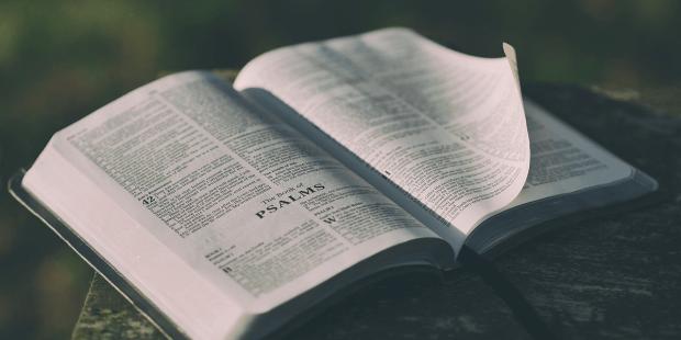 """إنجيل اليوم: """"إجعَلْهُم كُلَّهُم واحدًا ليَكونوا واحدًا فينا…"""""""