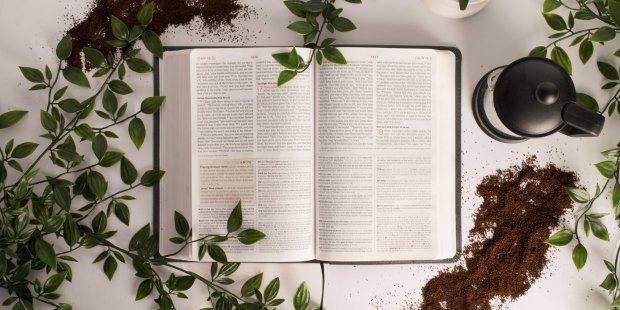 "إنجيل اليوم: ""بَلْ إِلى سَبْعِيْنَ مَرَّةً سَبْعَ مَرَّات.."""