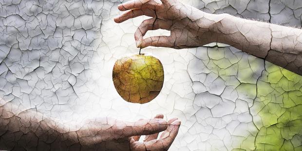هل آدم وحواء قصة حقيقية أم أسطورة؟